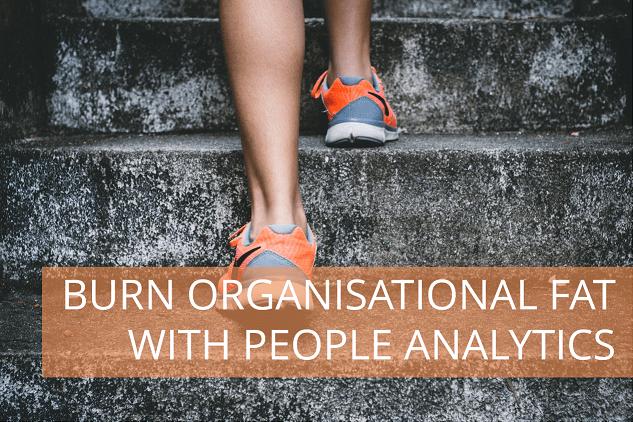 png-burn_organisational_fat-121
